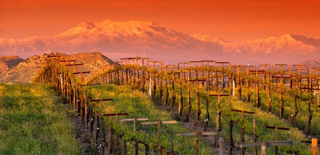 Without Prior Notice: Surprising Temecula Southern California Wine Country
