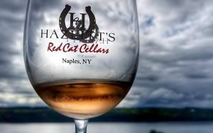 Five Things to do in Finger Lakes Wine Country for the Outdoorsy