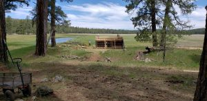 Voluntourism: Saving Brolliar Park Cabin, Coconino National Forest