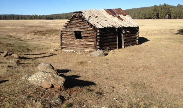 Brolliar cabin before renovation
