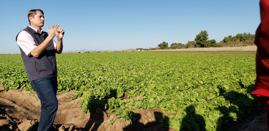 John Boelts stands with outstretched arm pointing to rows iceberg lettuce that are shadowed by silhouettes of Field to Farm tour participants