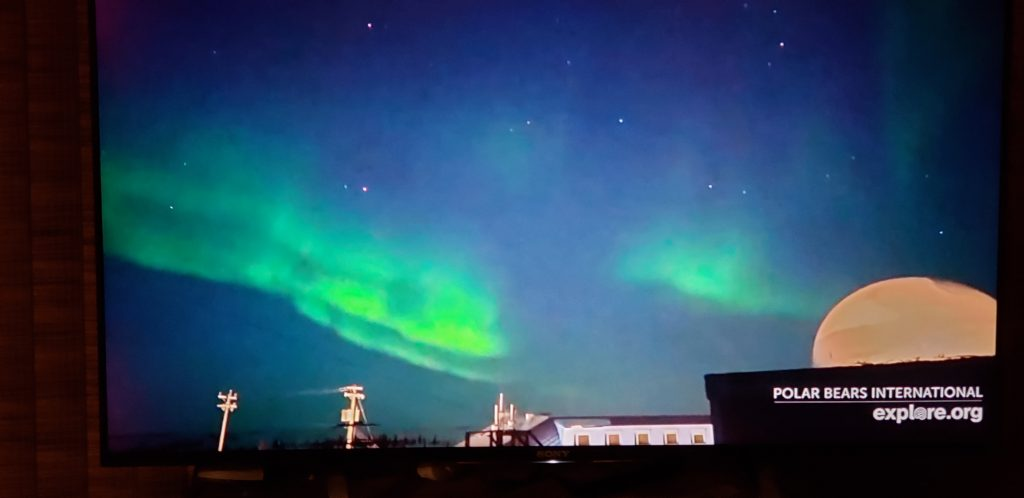 How to Take a Virtual Vacation? Hears the sounds by tuning into a webcam shown here with northern lights