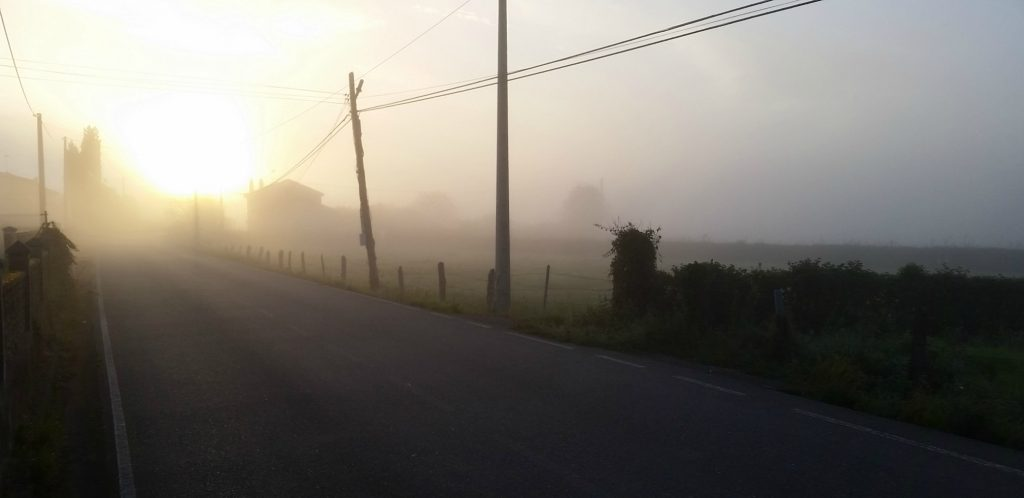 The sun comes up through fog and while yo can see the telephone wires silhouetted in the sunrise, I could barely make out the road along which the Camino primitivo follows