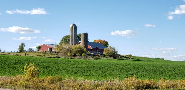 large barn with two silos and a larger barn adjacent sit on top of hill overlooking green alfalfa field on Wisconsin Catholic pilgrimage